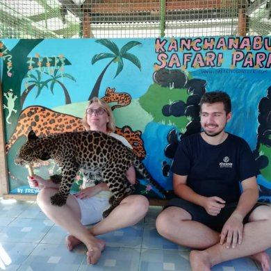 Erawan Waterfalls and Tiger feeding at Safari Park (Code 1017)