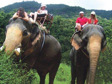 Kanchanaburi trekking tour with elephant riding and bamboo rafting (Code 1024)