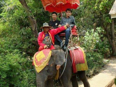 Floating Market and Elephant riding (Code 1007)