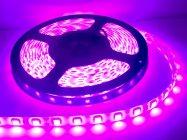 ไฟเส้น Led Strip light IP65 5050 14.4W 24V 60LED/M 12-14Lm สีชมพู