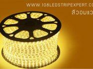 ไฟเส้นสายยาง STRIP LIGHT  5050 แสงวอมไวท์ ยาว 100 ม. (ท่อแบน) +พร้อมSetอุปกรณ์