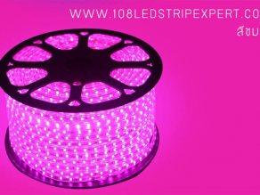 ไฟเส้นสายยาง STRIP LIGHT 5050 สีชมพู ยาว 100 ม. (ท่อแบน) +พร้อมSetอุปกรณ์