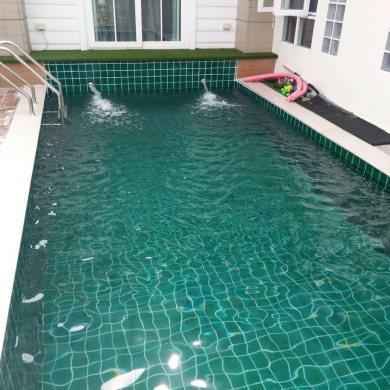 ประเภทสระว่ายน้ำ