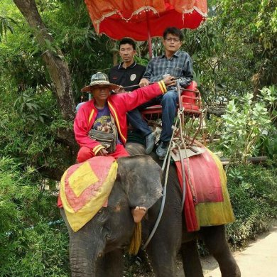 Floating Market and Elephant riding (Code 1007)