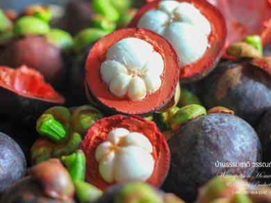 ผักและผลไม้ปลอดสารพิษ