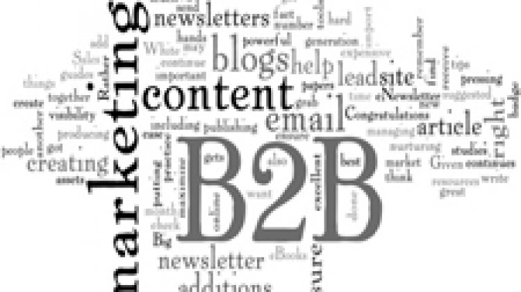 B2B MARKETING, CRM KEY ACCOUNT MANAGEMENT, 5-6 November 2013