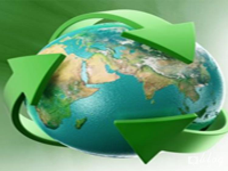 การจัดการด้านสิ่งแวดล้อมผ่านคู่ค้าทางธุรกิจ (Greening the Supply Chain)