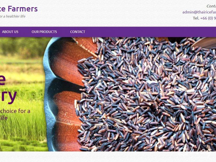 ข้าว Rice Berry ส่งออกจากกลุ่มเกษตรกร ที่พัฒนาสายพันธุ์โดยคนไทย