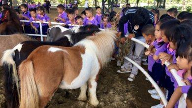 ศูนย์พัฒนาเด็กเล็ก เทศบาลตำบลออนใต้ มาทัศนศึกษาที่ดัชฟาร์ม