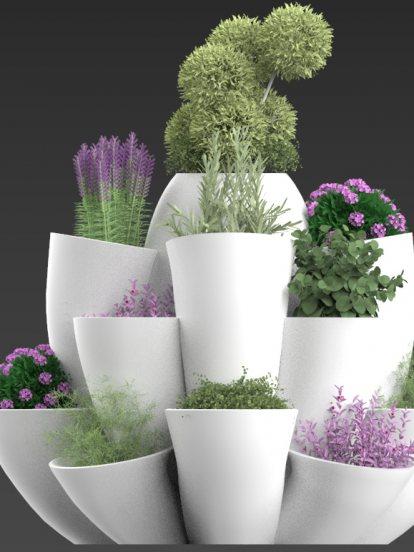 Pot forest Garden