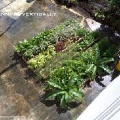 หมวด รับจัดสวน (Garden Design)