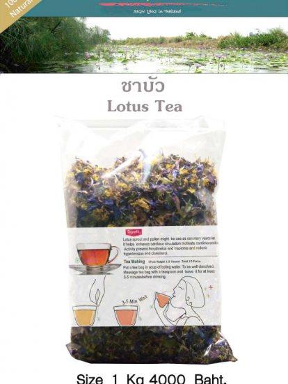 lotus Tea ชาบัว