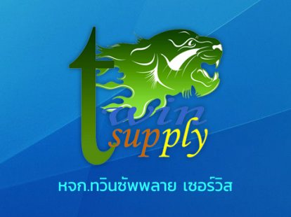 www.twinsupply49.com