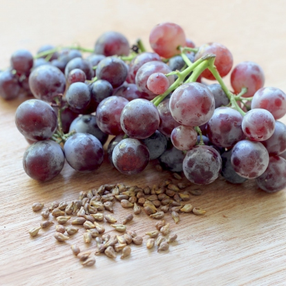 GRAPE SEED EXTRACT (95% PROANTHOCYANIDINS)